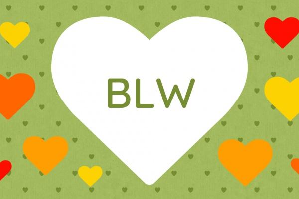 Za co kocham BLW - wrażenia po roku stosowania